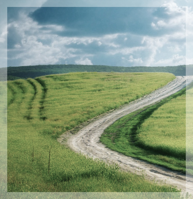 road through a field indicating comfort